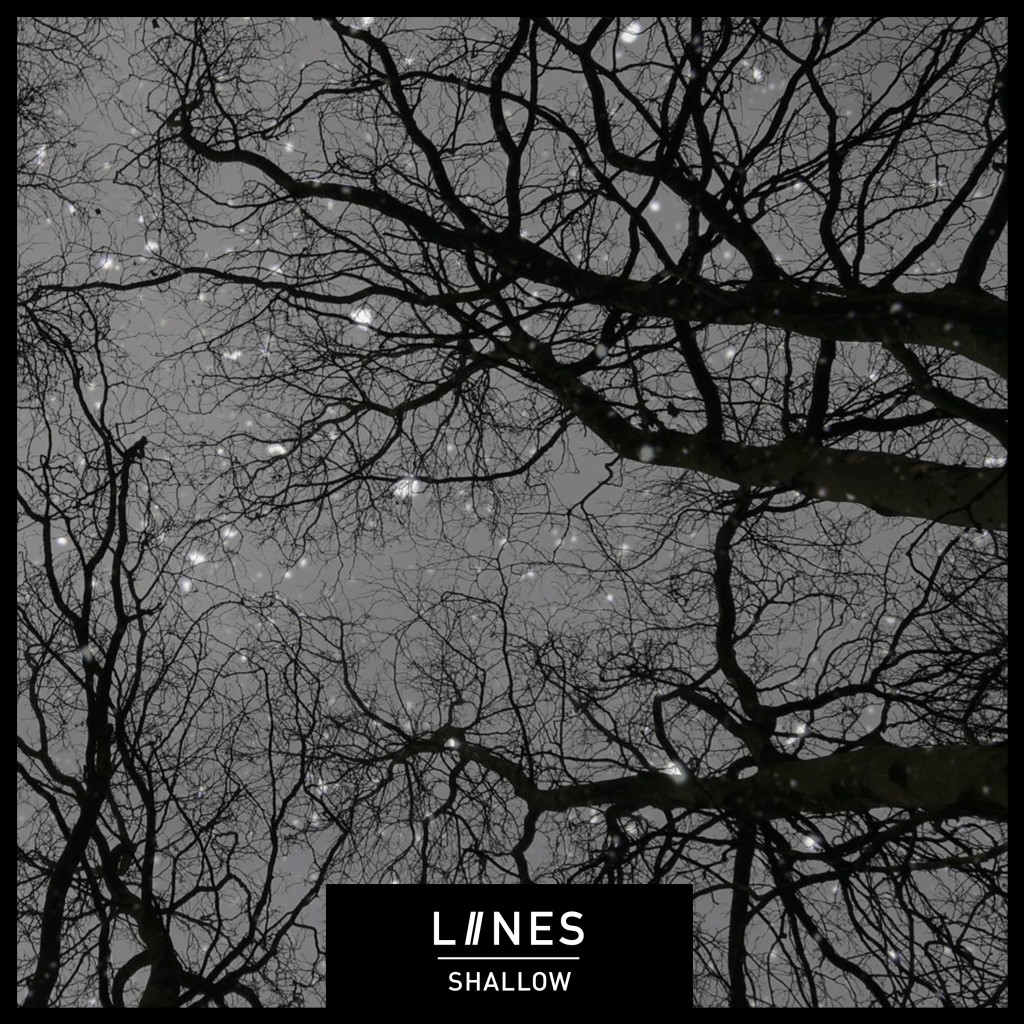 2. LIINES Single -- Shallow